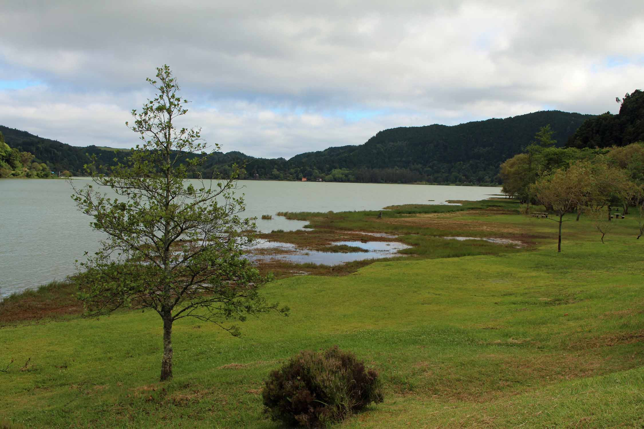 The Furnas lake in São Miguel island, Azores