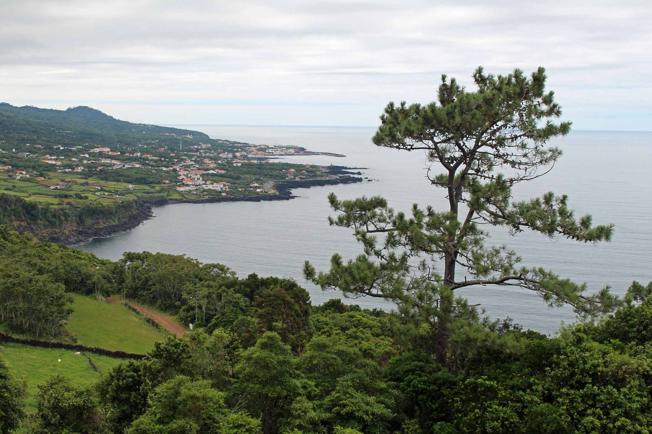 Beautiful landscape of the north coast, Pico Island, Azores