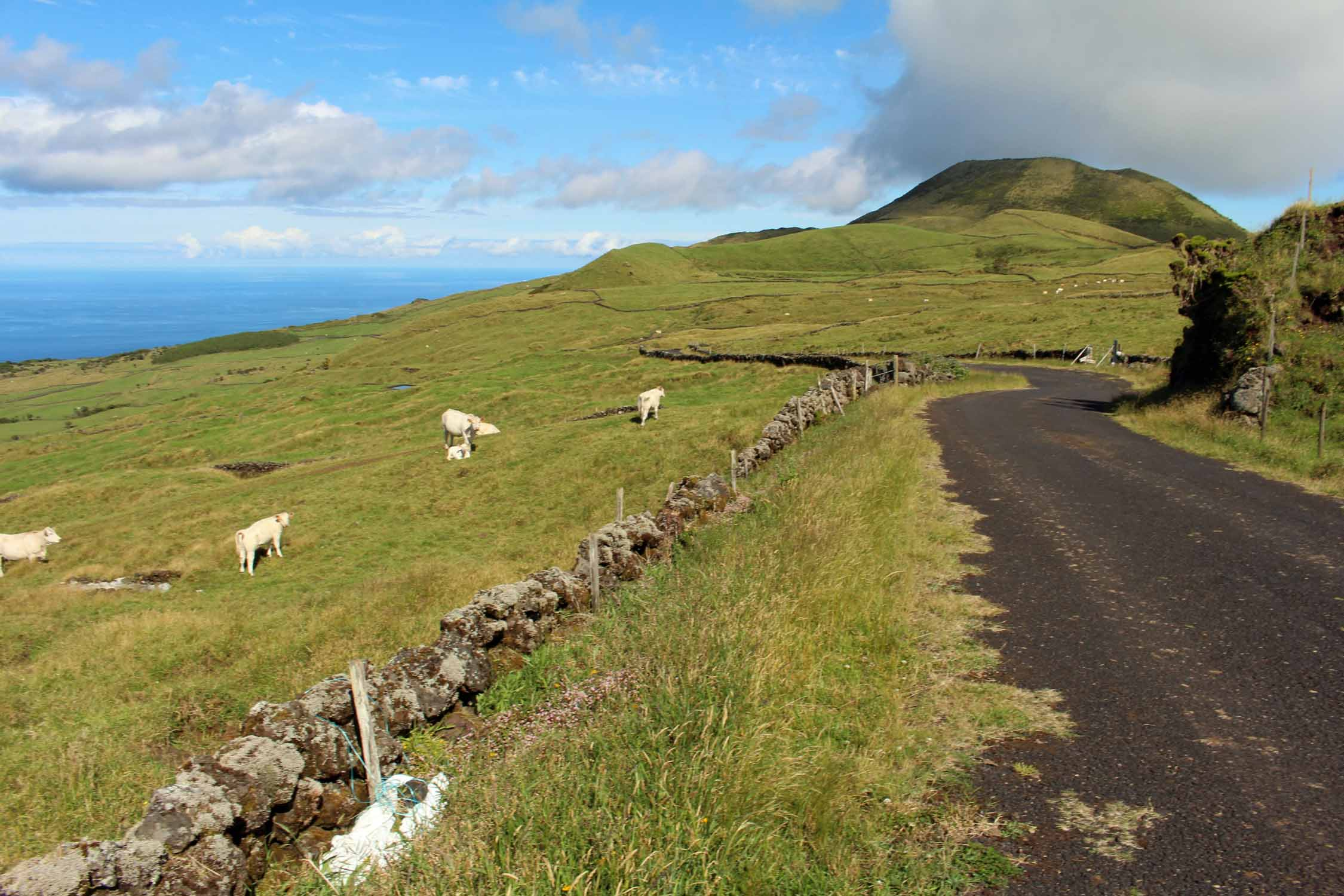 Beautiful landscape near Ribeirinha in Pico Island, Azores
