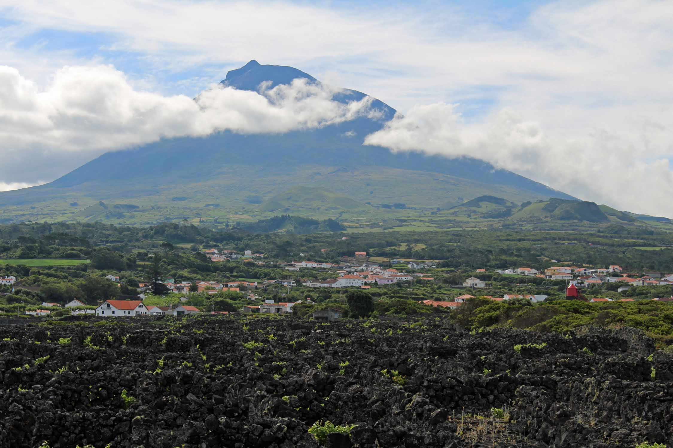 Vineyards and volcano in Pico Island, Azores