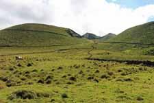 Isla de Pico