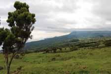 Lajes do Pico