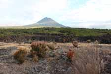 Volcan Pico