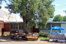 Transvaal village
