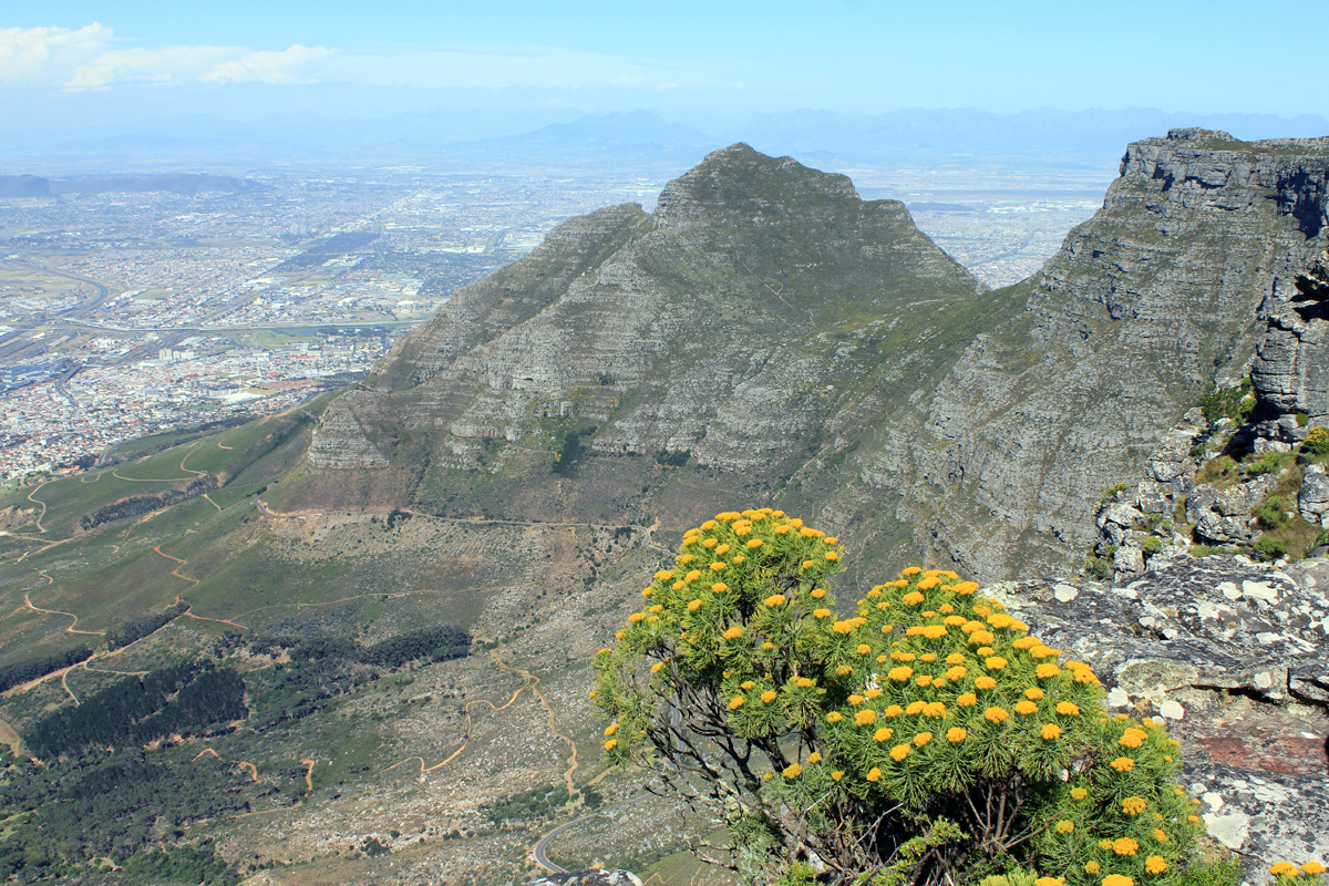 Table Mountain, view, South Africa