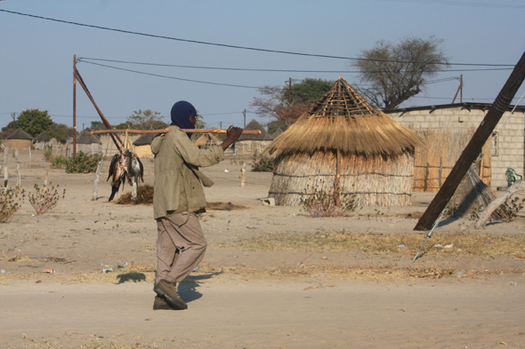 Botswana, village of Nguma