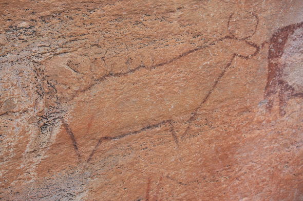 Africa, Rock paintings, Tsodilo Hills