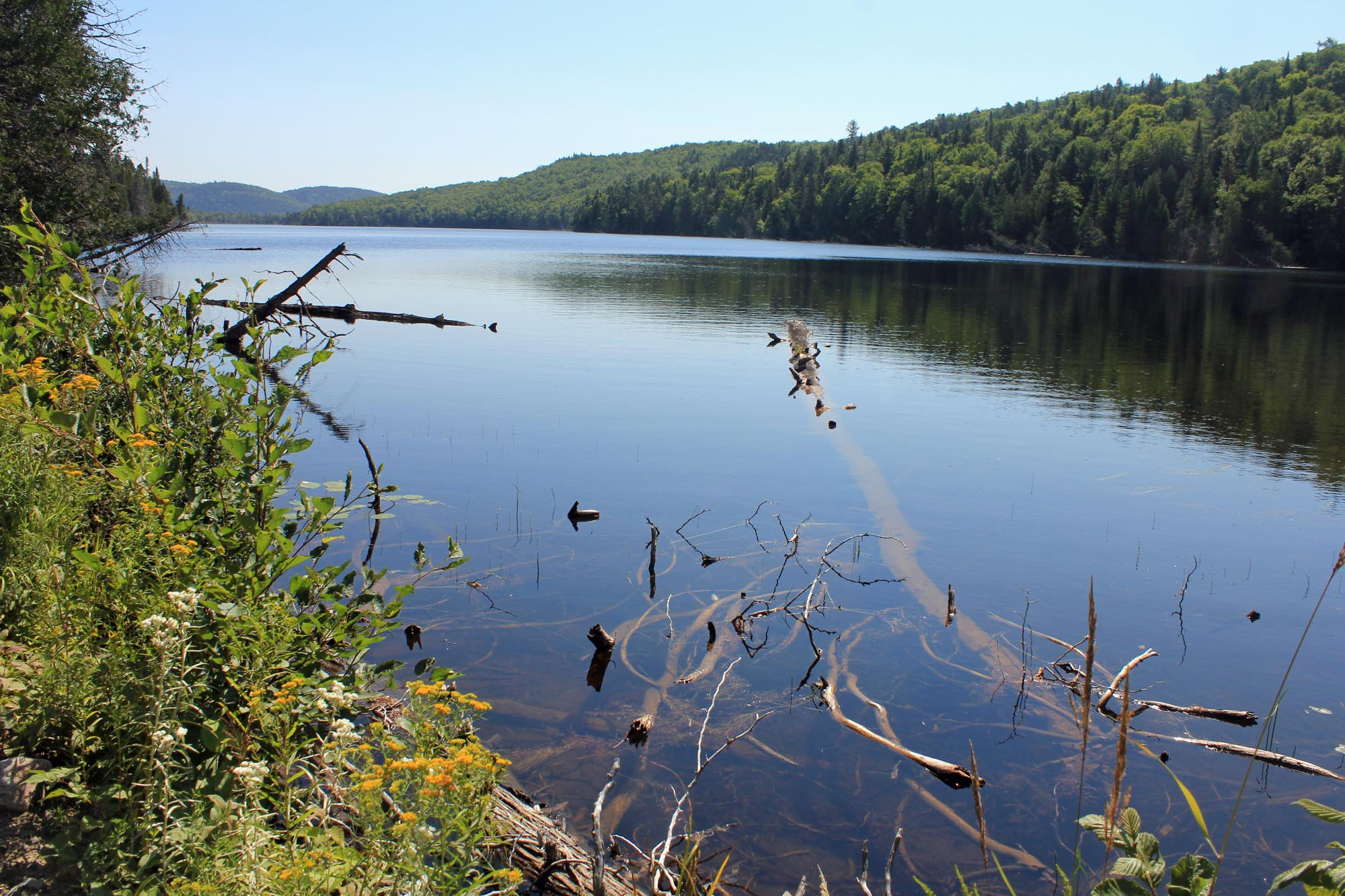Lake Vertnez, Mastigouche
