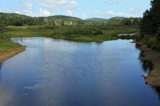 Rivière Ouareau