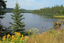Lake Brochets