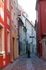 Rue Troksnu