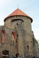 Château de Cesis