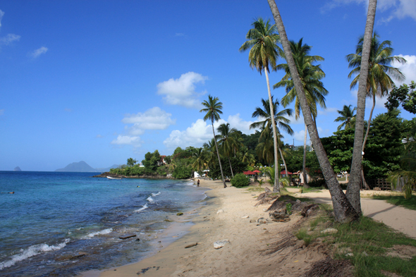 Plage Anse Figuier, Martinique