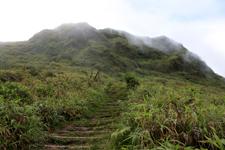 Mount Pelée
