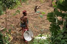 Togolaise