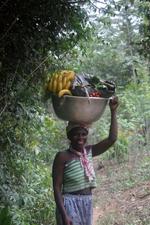 Togolese