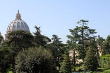 Gardens of Vatican