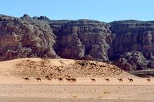 Oued Elberdj