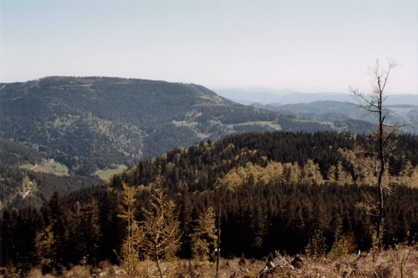 Landscape of the Black Forest, Germany