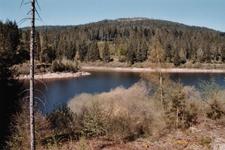 Schwarzenbach Stausee