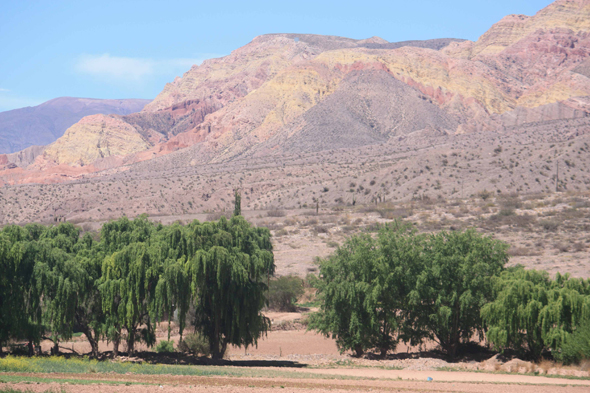 Landscape of the Quebrada de Humahuaca