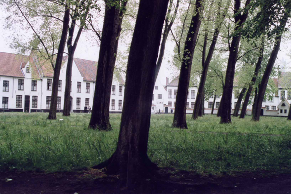 Brugge, the famous Beguinage