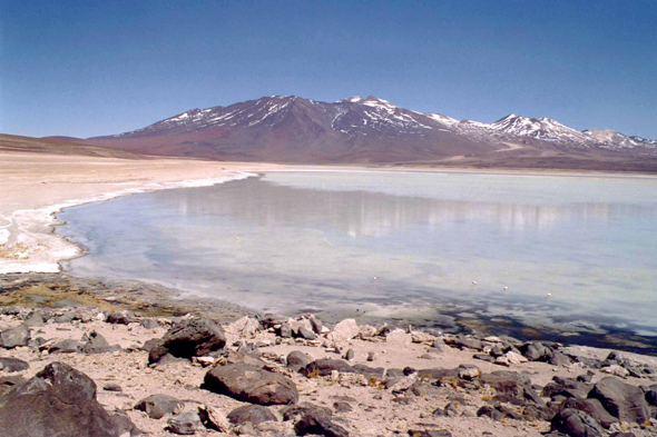 Laguna Blanca in the South Lipez