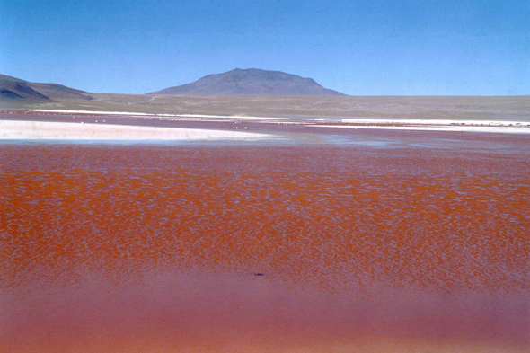 Laguna Colorada, vista