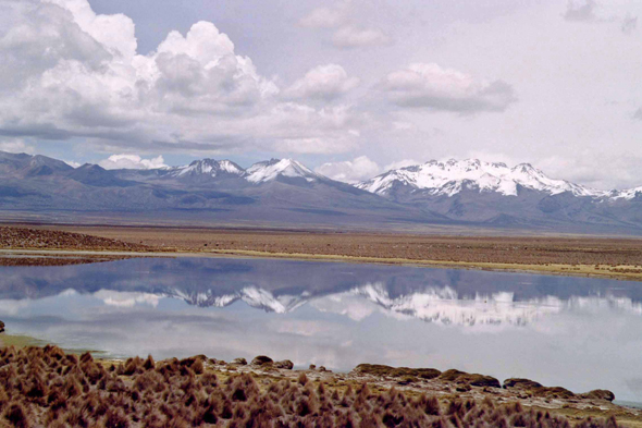 Sajama national park, landscape