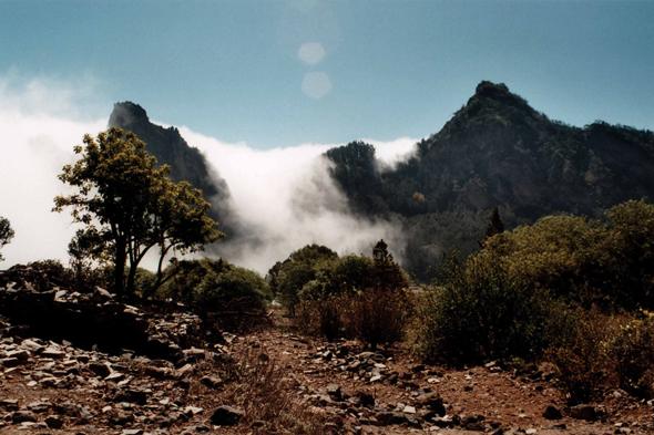 Pico Da Cruz.Ideas For A Trip Pico Da Cruz