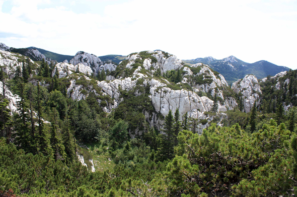 Park of Velebit, landscape