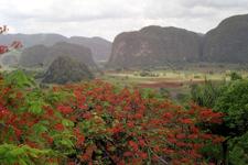 Vallée des Mogotes