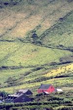 Murreagh