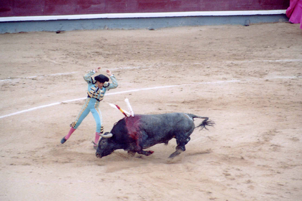 Bullfight, spectacle