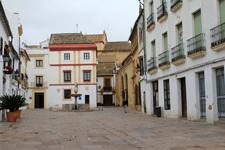 Potro square