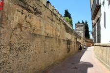 Wall of the Alcazar