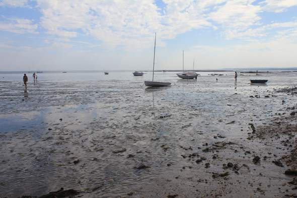Saint-Vaast-la-Hougue, baie