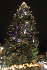 Christmas tree of Strasbourg