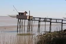 Estuario de la Gironde
