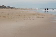 Playa de Lacanau