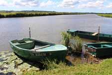 Cotentin marshes