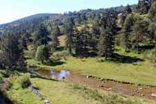 Vallée de l'Espezonnette