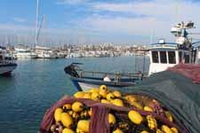 Port-Barcarès