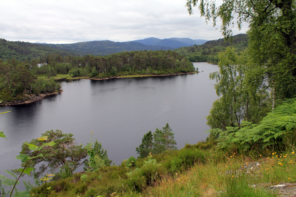 Glen Affric Love Of Scotland Glen Affric Glen Affric