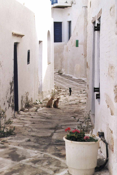 Antiparos, alley