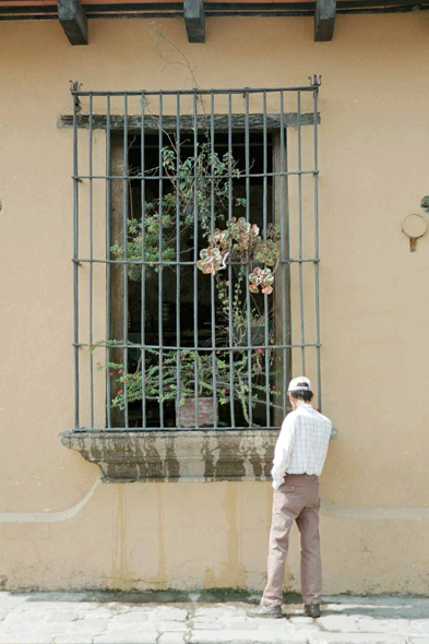 Guatemala, Antigua, latticed window
