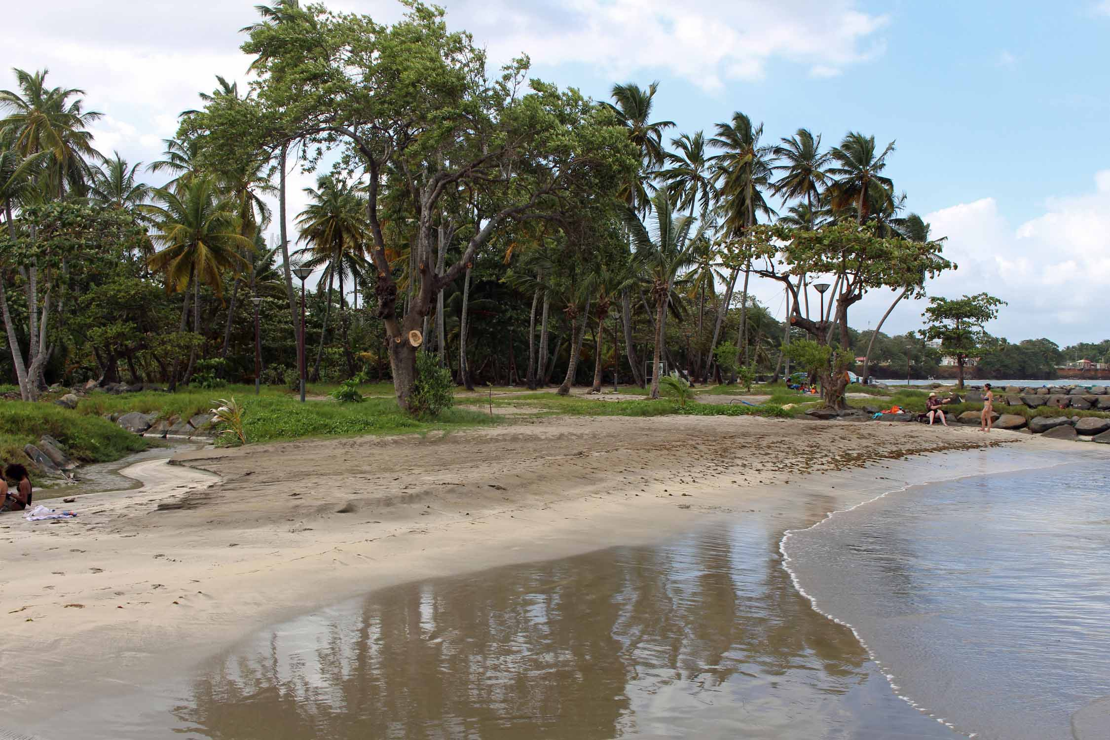 Roseau beach