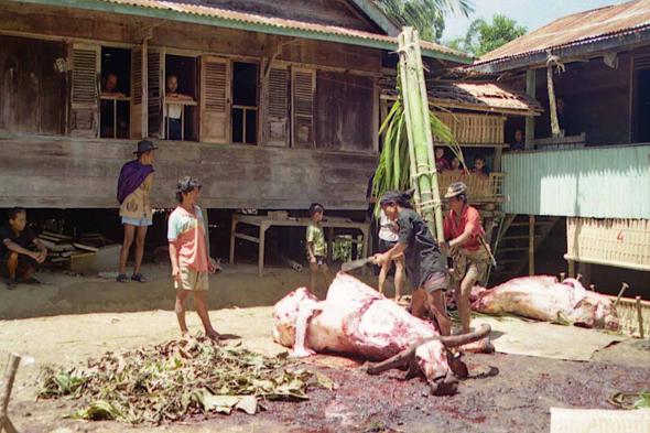 Sacrifice d'un buffle à Lokomato