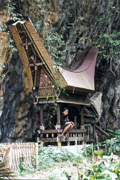 Casa Toraja
