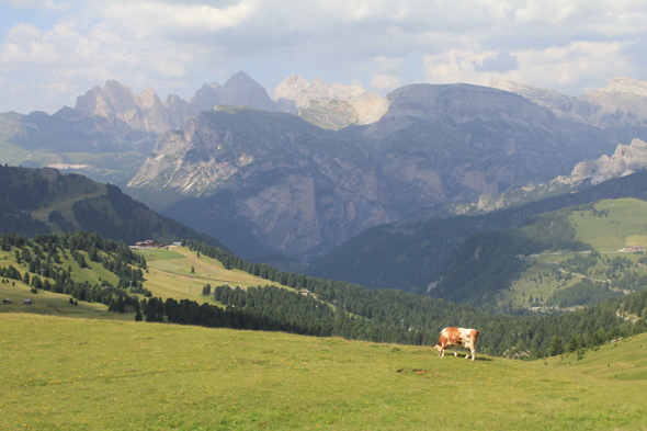 Sella pass, landscape